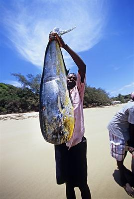 Fisherman Holding Dolphin-Fish | Earth's Resources