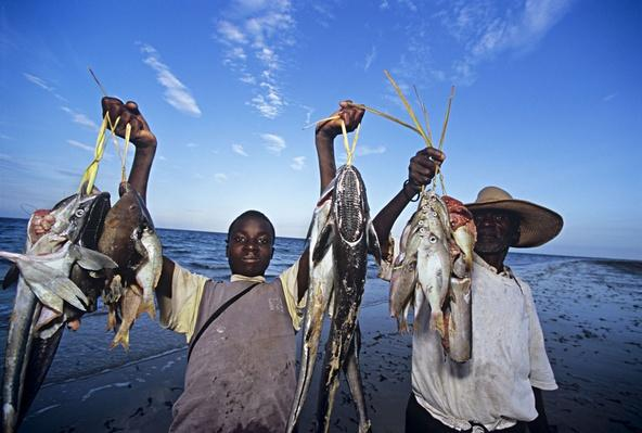 Fishermen Bringing Catch Home-  Inhassoro, Mozambique | Earth's Resources