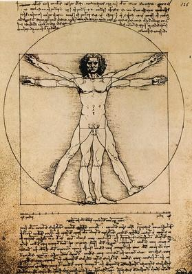 Da Vinci Rule of Proportions | Pre-Industrial Revolution Inventors and Inventions