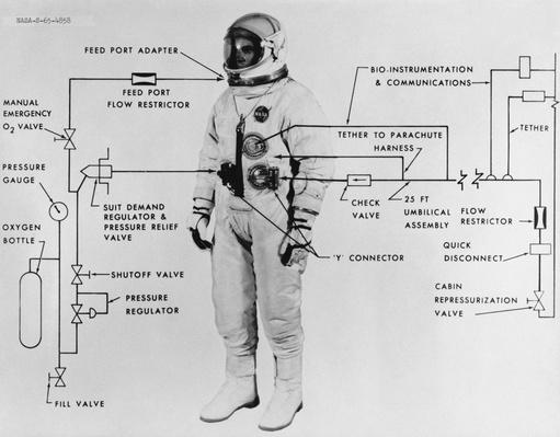 Model of the EVA (Extravehicular) suit worn by Edward H. White II | Earth and Space