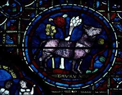 Taurus, from the zodiac window, 13th century
