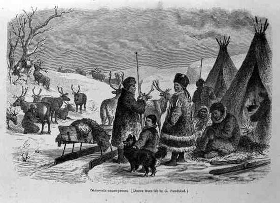 Samoyede Encampment, from 'The History of Mankind' by Prof. Friedrich Rayzel, pub. in 1904