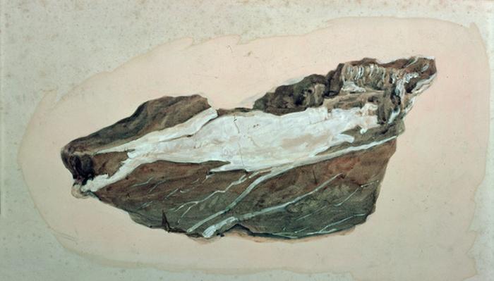 Study of Rock with Quartz veining, 19th century