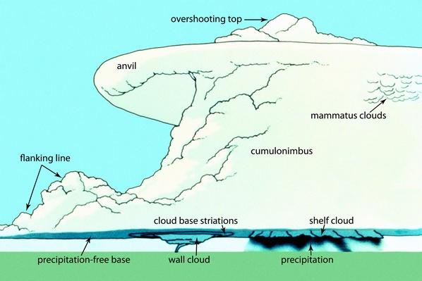Schematic of Components of Potentially Tornadogenic Thunderstorm | Weather