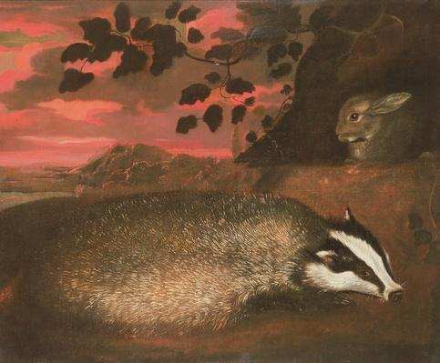 Badger, 17th century