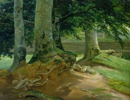 Beech Trees in Frederiksdal near Copenhagen, 1828