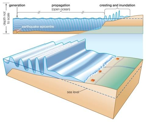 Generated by an undersea earthquake, a tsunami? | Natural Disasters: Hurricanes, Tsunamis, Earthquakes