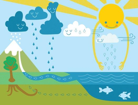 Infographic of Water Cycle | Earth's Surface