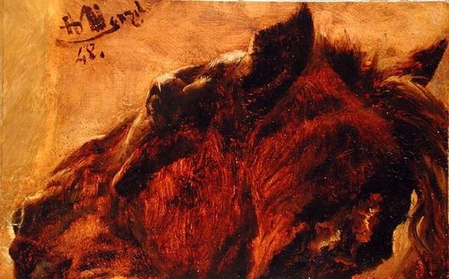 Head of a Dead Horse, 1848