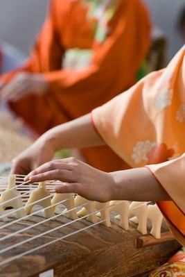Koto performance | Musical Instruments