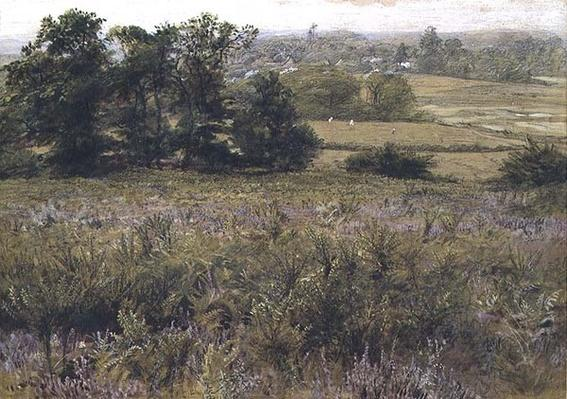 The Furze Field, 19th century
