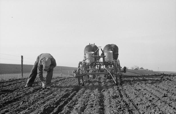 Farmer Inspecting Soil | Ken Burns: The Dust Bowl