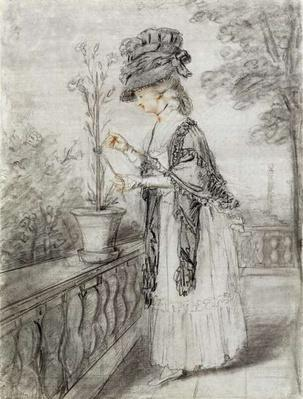Lady on a Terrace Tending a Carnation Plant