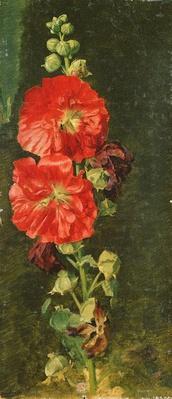 A Stockrose, 1827