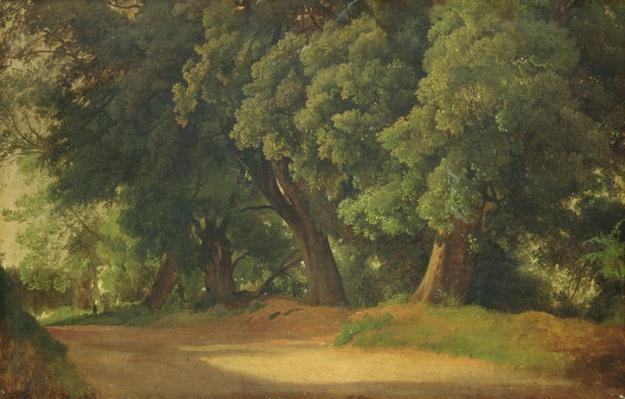 Oak Trees in Holstein