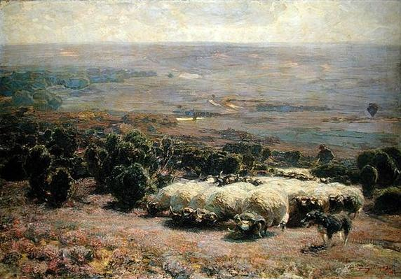 A Herd of Sheep in the Luneburger Heide, 1902