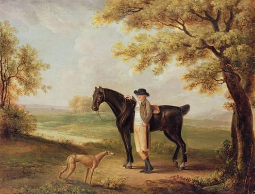 Horse, rider and whippet