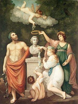 Aesculapius, Flora, Ceres and Cupid Honouring the Bust of Linnaeus, plate 17 from 'The Temple of Flora' by Robert Thornton, published 1800