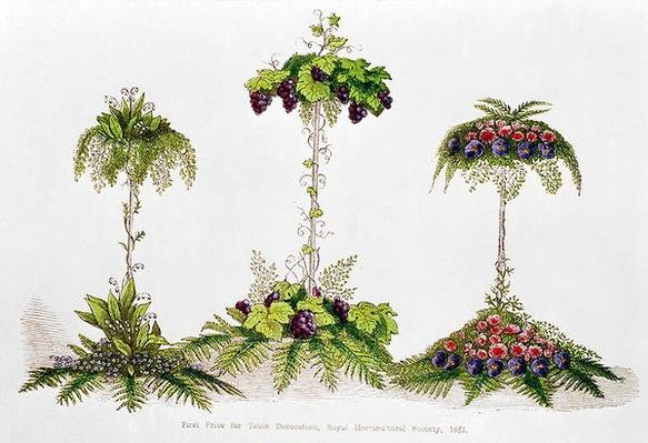 First Prize for Table Decoration, Royal Horticultural Society, 1851