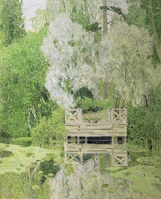 Silver White Willow, 1904