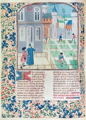 Ms 5064 f.151v The Garden, illustration from 'Le Livre des Prouffitz Champestres' by Pietro de Crescenzi