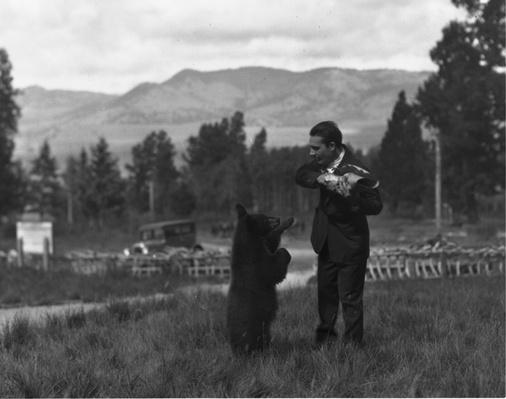 Yellowstone Tourist and a Bear, ca. 1940 | Ken Burns: The National Parks