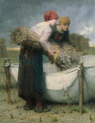 Women in the Field, 1882