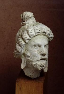 Head of Brahma, Afghanistan