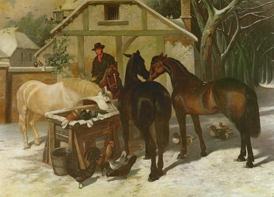 At the Water Trough in Winter