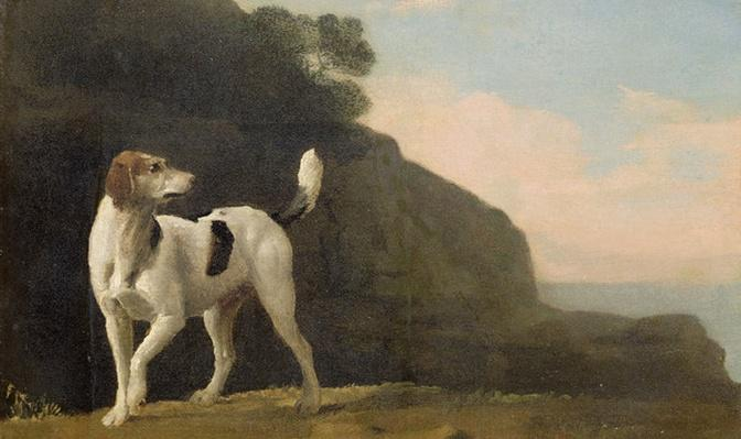 A Foxhound, c.1760