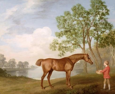 Pumpkin with a Stable-Lad, 1774