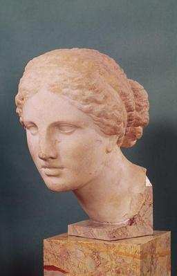 The Kauffmann Head, Head of Aphrodite, copy of the Aphrodite of Cnidus by Praxiteles