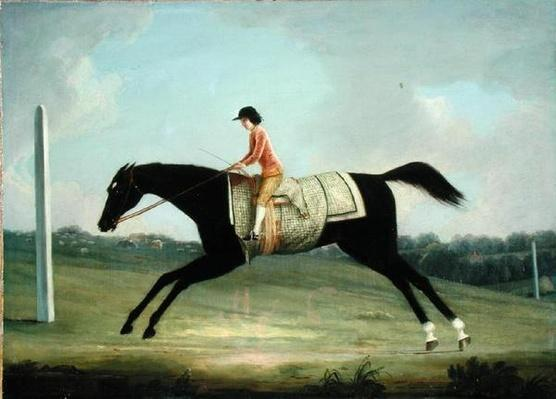 Borlase Cokayne as a Boy riding Sultana, 1751
