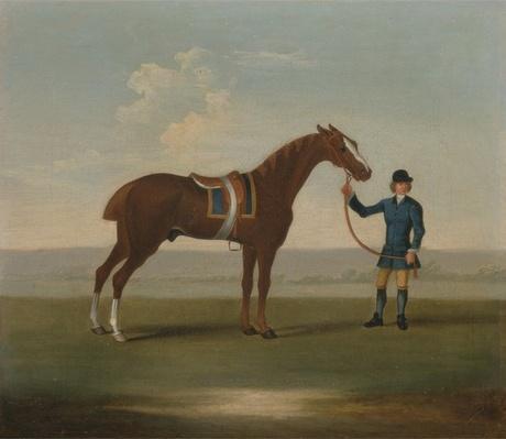 A Chestnut Horse