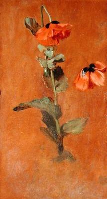 Study of Poppies, 1832