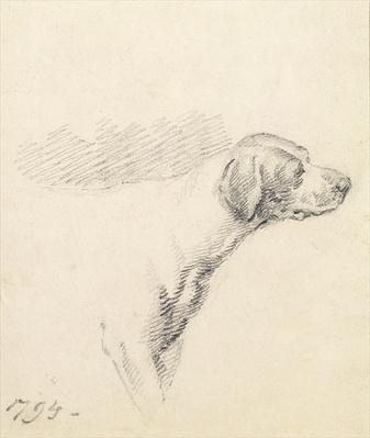 Study of a Hound, 1794