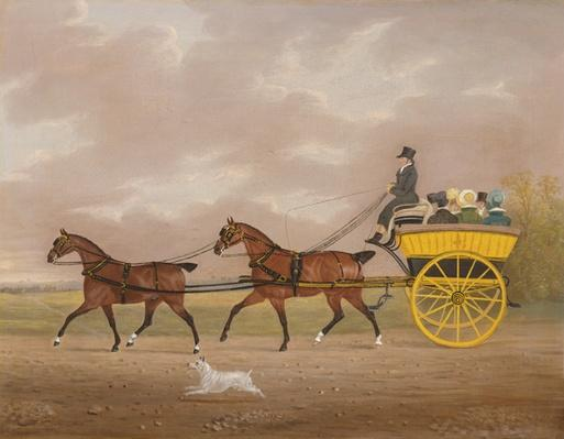 A Gentleman driving Tandem to a Jaunting Car