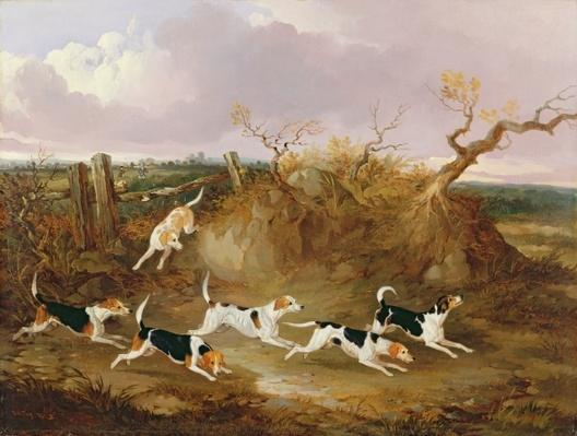 Beagles in Full Cry, 1845