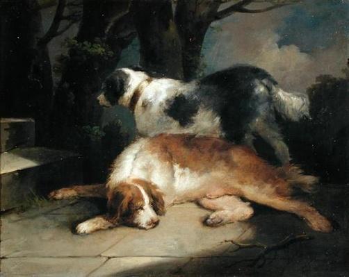 Setters, 1799