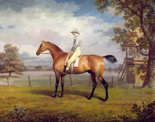 The Duke of Hamilton's Disguise with Jockey Up