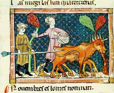 Fol.59r October: Ploughing