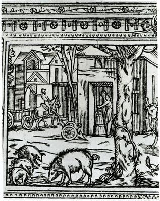 A Farm, illustration from 'Theatre d'Agriculture et Mesnage des Champs' by Olivier de Serres