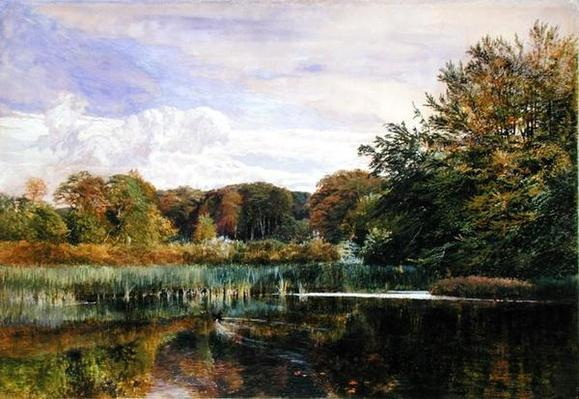 The Mill Pond, Evelyn Woods, 1860