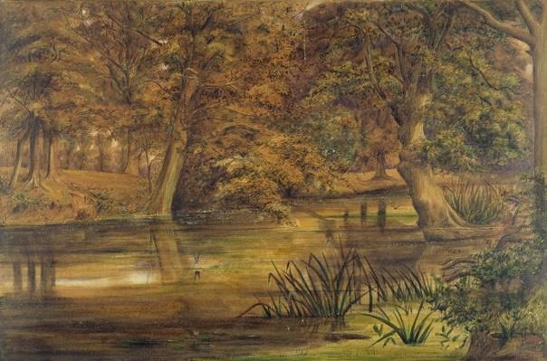 Back Water of the Bratford, 1864