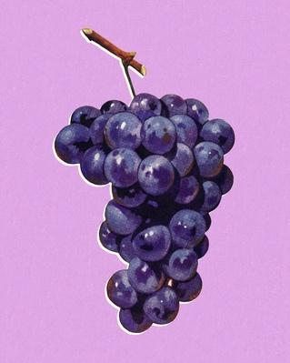 Bunch of Grapes | Health and Nutrition