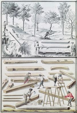 Ms 131k Different species of tree and sawing logs, from 'Traite de Fortifications'
