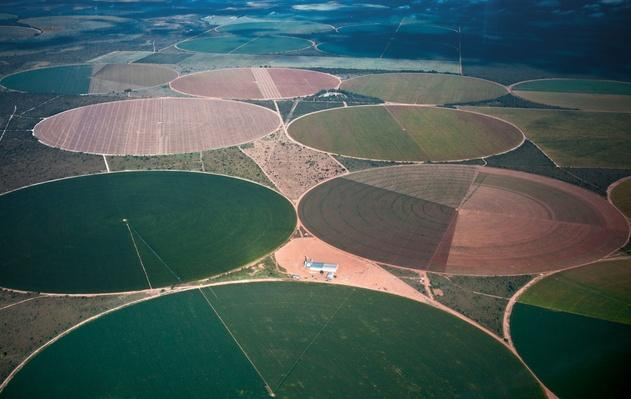 Aerial View of Irrigated Plantations | Earth's Resources