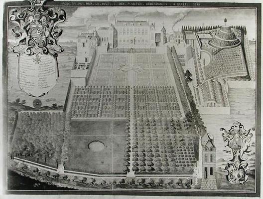 The King's Medicinal Plant Garden, 1636