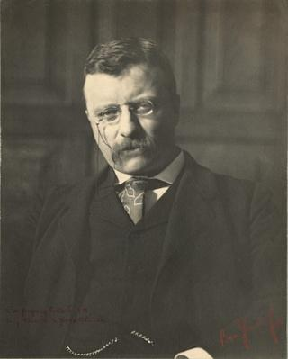 Portrait of Theodore Roosevelt as Governor, 1899 | Ken Burns: The Roosevelts