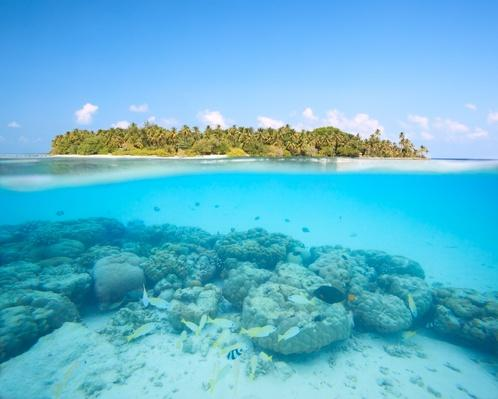 Underwater Reef and Island in the Maldives | Earth's Surface